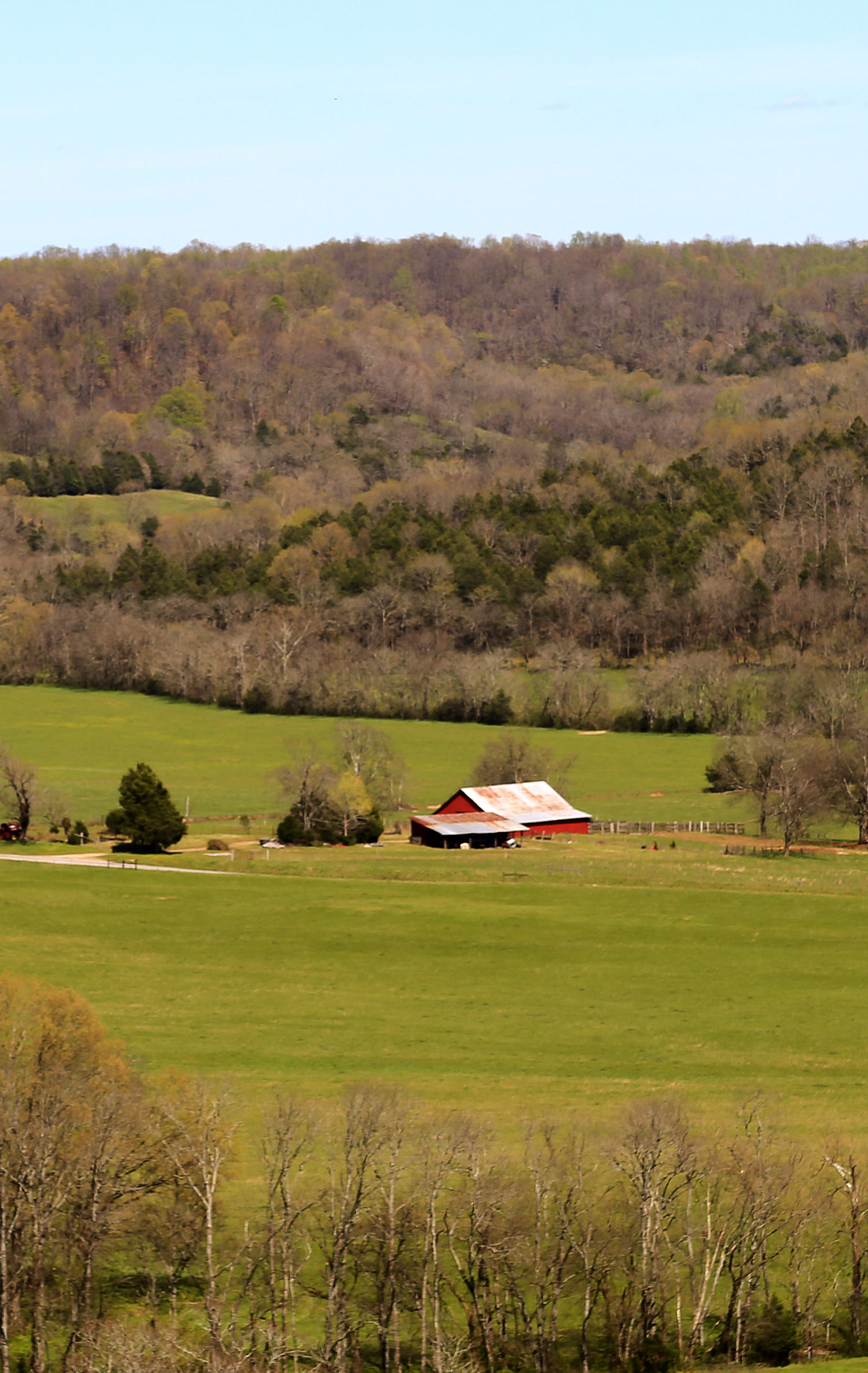 Southern Paradise Horse Retirement Farm